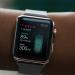 tesla apple watch uygulaması